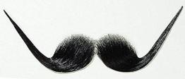 Bart: Schnurrbart, extrem hochgedreht - 1