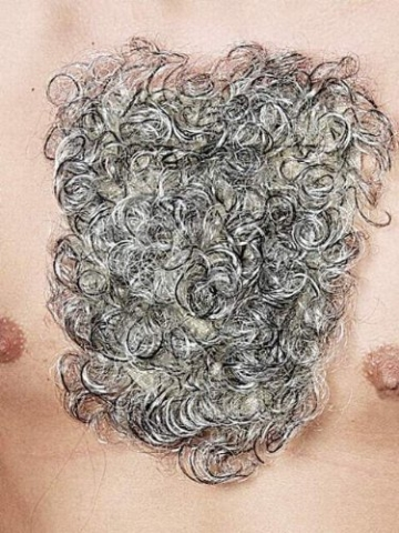 Brusthaar: Brusthaartoupet, grau - 1