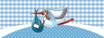 Deko-Picker: Party-Picker mit Storch, hellblau, 50er-Pack - 2
