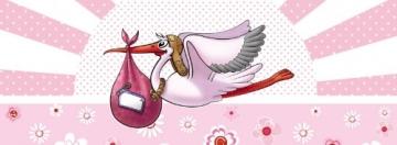 Deko-Picker: Party-Picker mit Storch, rosa, 50er-Pack - 2