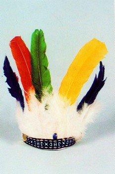 Indianer-Kostüm: Federschmuck, bunte Federn, klein - 1