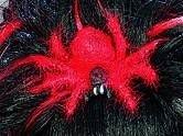 """Perücke: """"Spider-Lady"""", schwarz-rot, mit Deko-Spinne - 1"""