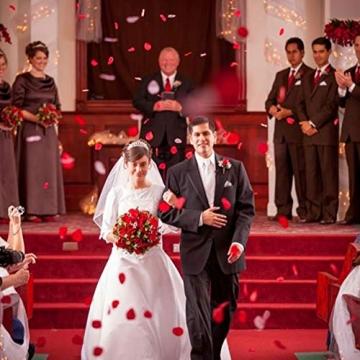 Rosenblätter - Rosen Blüten - Valentinstag - Hochzeit - Geburtstag - romantischer Abend 6