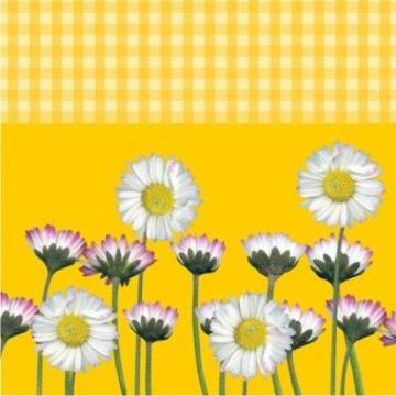 """Servietten: Party-Servietten """"Daisy Yellow"""", 33 x 33 cm, 20 Stück - 1"""