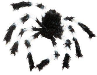 Spinne: Monsterspinne, schwarz-weiße Beine, ca. 20 cm - 1
