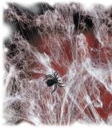 Spinnengewebe: Spinnenweben mit Spinne, 3 g - 1